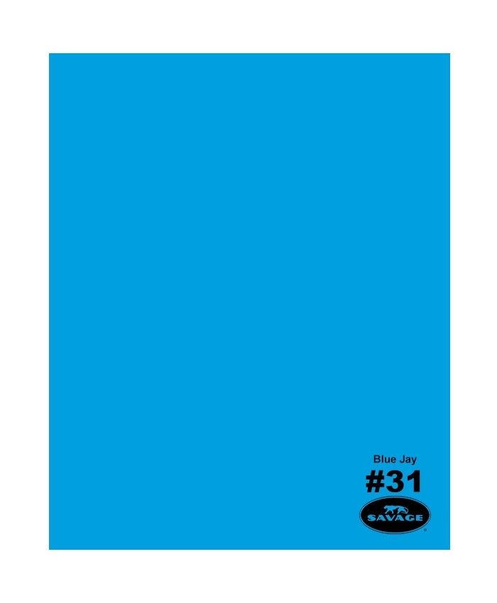 Savage Widetone Seamless Background Paper #31 Blue Jay 2.7m